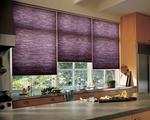 Striking Purple Honeycomb Shades/Blinds -- North Palm Beach Home -- Florida