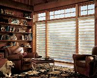 Pirouette Window Shadings in Lake Worth Florida home -- dog optional