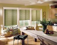 Royal Palm Beach Florida -- Three Green Hunter Douglas Vignette Modern Roman Shades